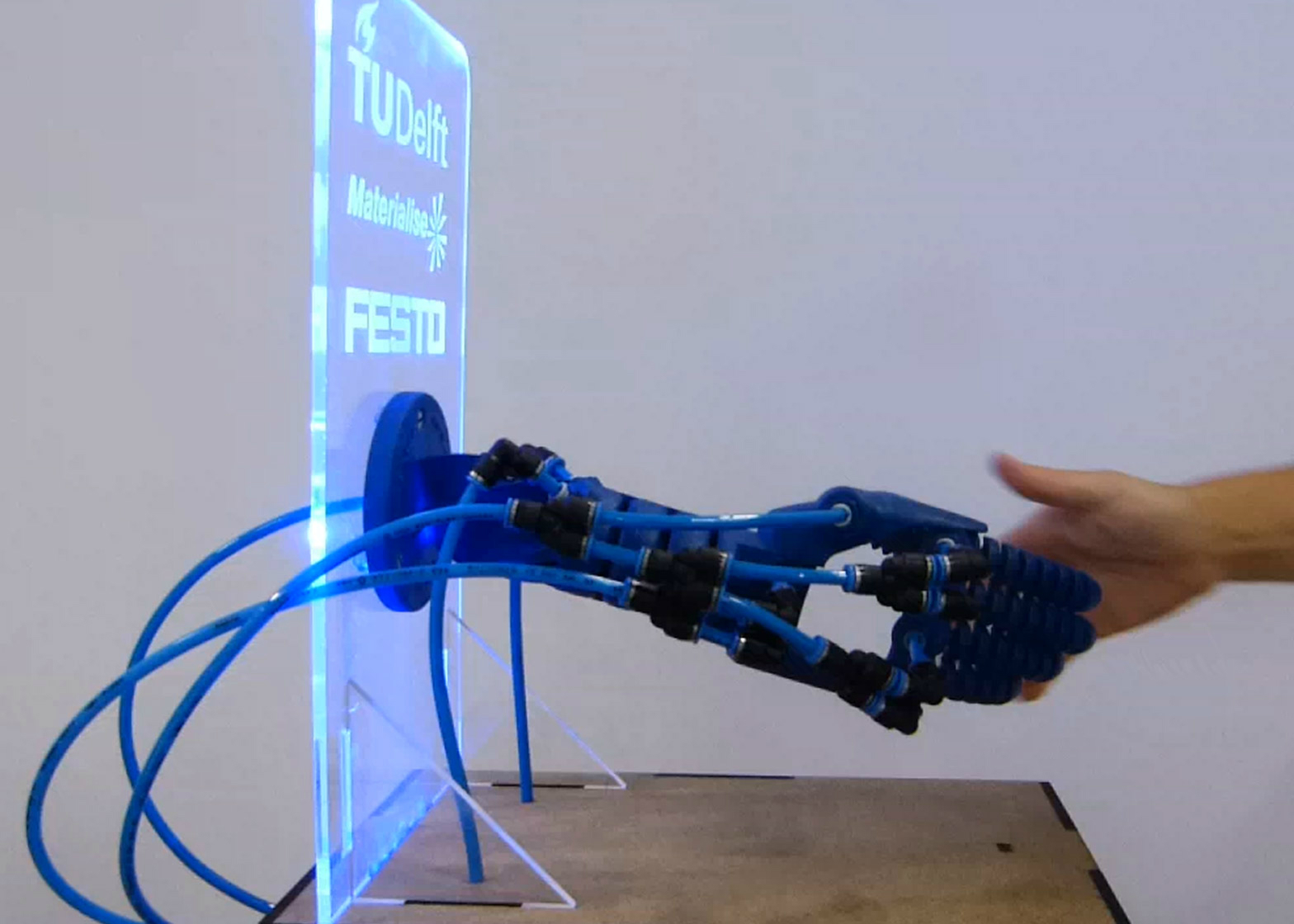 Robotic Limb
