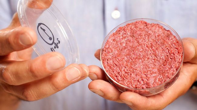 Humans will need 80% more meat by 2050